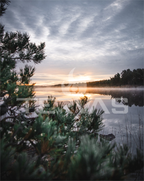 Ladattava kuva Tervas Outdoor aamu-usva 1